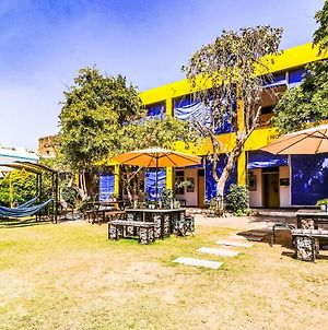 The Hosteller Pushkar photos Exterior
