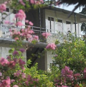 Thach Thao Homestay photos Room
