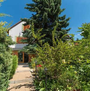 Soos Villa Balaton photos Exterior