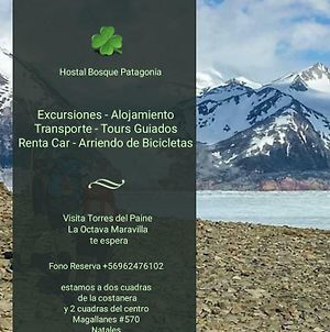 Hostal Bosque Patagonia photos Exterior