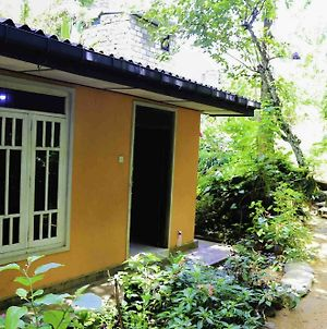 Yoho Randima Homestay photos Exterior