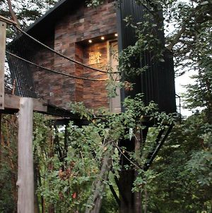 Tree Lodge Chiloe photos Exterior
