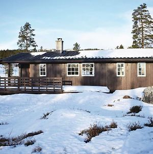 Four Bedroom Holiday Home In Eggedal photos Exterior