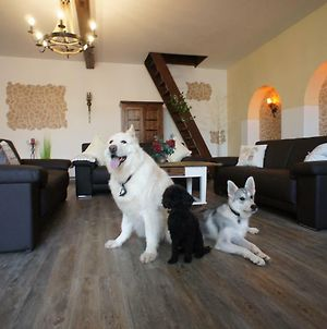 Villa Romantica Large Holiday Home For Up To 12 People, Dogs Welcome photos Exterior