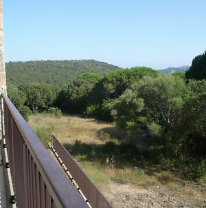 Apartment With 2 Rooms In Porto-Vecchio, With Pool Access, Terrace And photos Exterior