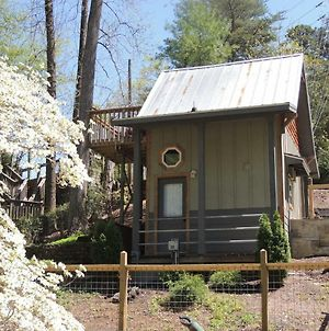 Gray Logs Cottage W/Tiny House Home photos Exterior