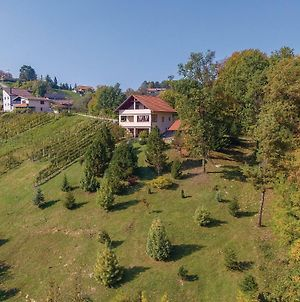 Two-Bedroom Holiday Home In Stubicke Toplice photos Exterior
