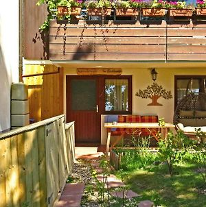 Apartment-Pension Im Eichenweg photos Exterior