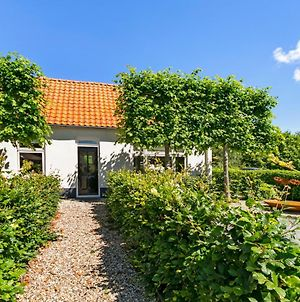 Holiday Home Dijkstelweg 30 - Ouddorp With Terrace And Very Big Garden, Near The Beach And Dunes photos Exterior