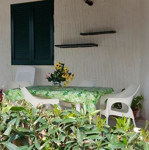 House With 3 Bedrooms In Mazara Del Vallo, With Furnished Terrace - 10 photos Exterior