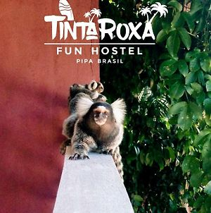 Tinta Roxa Fun Hostel photos Exterior