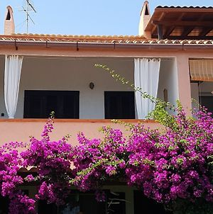 Apartment With One Room In Olbia, With Wonderful Sea View And Enclosed photos Exterior