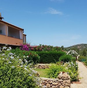 Apartment With 3 Rooms In Olbia, With Wonderful Sea View And Enclosed photos Exterior