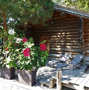 Log Cabin In The Loire Valley photos Exterior