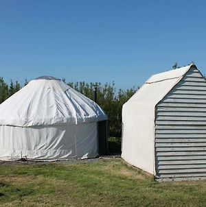 Mill Haven Place Glamping-Yurt 1 photos Exterior