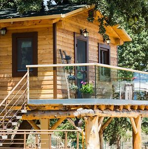 Stolidi Mou Treehouse photos Exterior