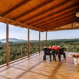 Seaview Flat In An Olive Grove By The Sandy Beach photos Exterior