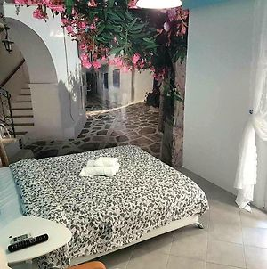 Renovated, Near Metro With Backyard, Acropolis 10 Min photos Exterior