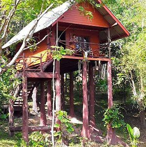 Treehouse-Holidays photos Exterior