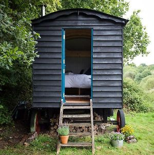 Beautiful, Secluded Shepherd'S Hut In The National Park photos Exterior