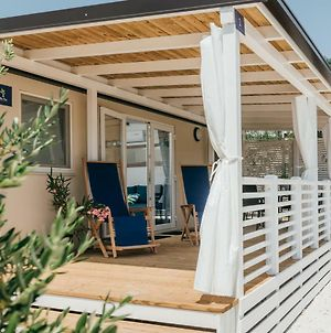 Olive Tree Mobile Homes photos Exterior