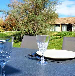 Appartement Wifi, Piscine, Spa, Clim, +Velo A Arles En Camargue Pour 6 Pers photos Exterior