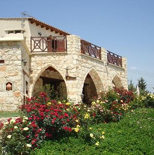 Villa For Rent In Miliou Close To Lachi & Peyia photos Exterior