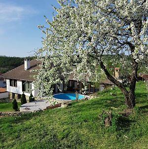 Holiday Home Arbanasi photos Exterior