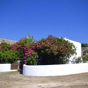 Lovely And Homely Mykonian Cottage photos Exterior