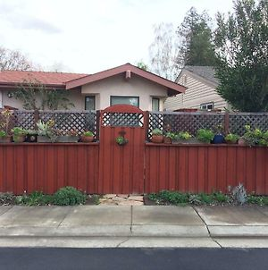 Best Of Davis - For You And Your Pet! photos Exterior