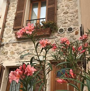 Vieille Ville 2 - La Petite Maison A Safranier, 2 Bedrooms, Max 4 Adults And 2 Kids photos Exterior