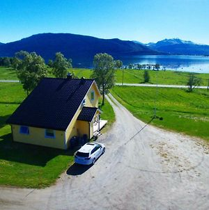 1 Room In The Yellow House, Close To Airport & Lofoten photos Exterior