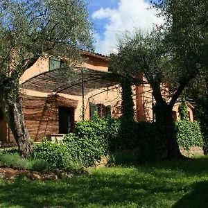 Nytimes-Selected Charming Villa In Olive Grove photos Exterior