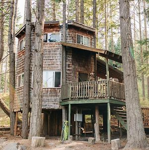 Tree House Tranquil-A-Tree photos Exterior