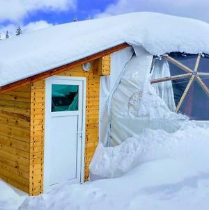 Igloo In The Woods - New, Warm And Inspiring photos Exterior