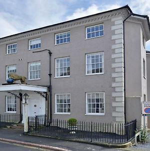 Golden Lion House - An Impressive, Historic And Spacious Townhouse, Ashburton photos Exterior
