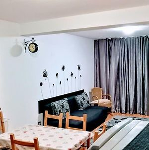 Cozy 2 Rooms Apartment In Cioplea Area, Predeal photos Exterior