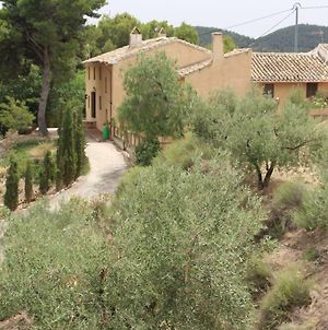 The Hibiscus Retreat Adult Only photos Exterior