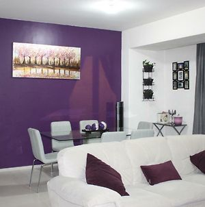 Cozy And Modern Apartment In Roma And Condesa Area, With Coffe Mexican Gourmet photos Exterior
