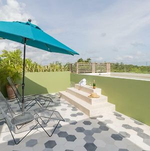 Casa Selva 3Br Jungle Penthouse With Private Pool And A Cenote In Your Backyard! photos Exterior