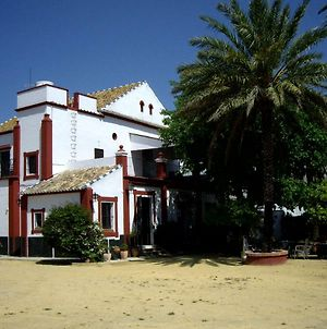 """Hacienda De Gracia "" Charming And Typical Andalusian House In Sevilla Urban Area photos Exterior"