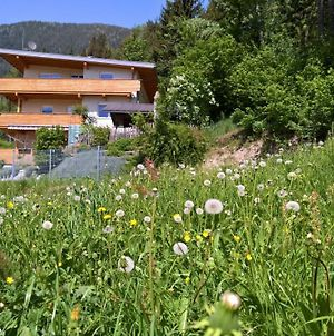 Holiday Home Zillertal - Haus Gigl photos Exterior