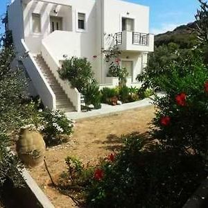 House Surrounded By Olive Trees photos Exterior