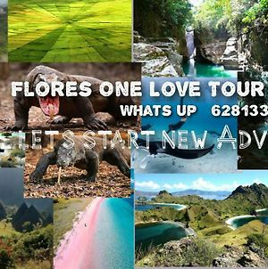Flores One Love Homestay And Tours photos Exterior