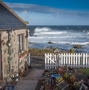 Pew With A View - Seafront Cottages photos Exterior