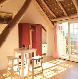 Red Squirrel Loft. Your Home Inside A Vineyard. photos Exterior