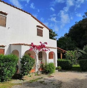 Luxury Villa In San Felice Circeo For Holidays photos Exterior
