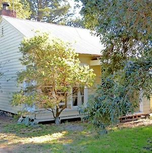 Happy Cozy House For Holidays, Beach, Bbq, Pet Friendly 35Kms From Cbd In Country Life Style !!! photos Exterior