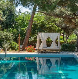 Villa Oasis With Private Pool And Garden In Lagonisi photos Exterior