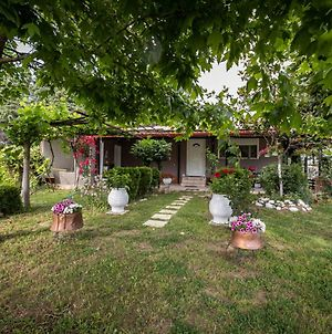 Trikala Family & Pet Friendly House photos Exterior